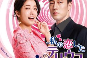 私の恋したテリウスキャストや視聴率は?日本での再放送予定はある?