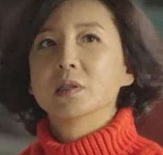 シム・ヘジン/ファン・ジニ役