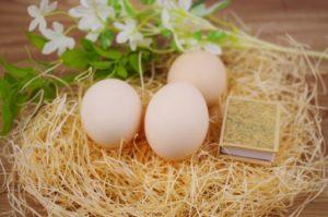 離乳食卵の進め方毎日あげて大丈夫?何日おきがベスト?
