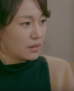 チン・ギョン/シン・ヨンオク役