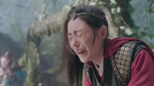 チャン・ティエンアイ/応歓歓(おうかんかん)役