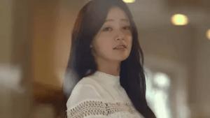 ソン・ハユン/チン・ヒヨン役