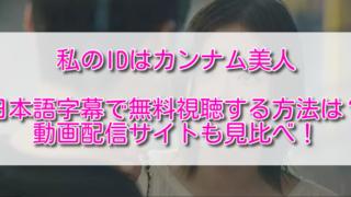 私のIDはカンナム美人を日本語字幕で無料視聴する方法は?動画配信サイトも見比べ!