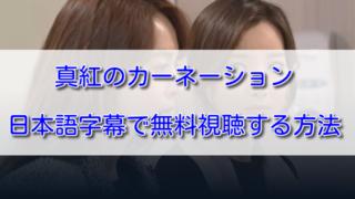 真紅のカーネーションを日本語字幕で無料視聴する方法