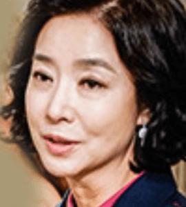 キム・ボヨン/ファン・ギシャ役